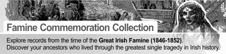 Discover Your Irish Family History